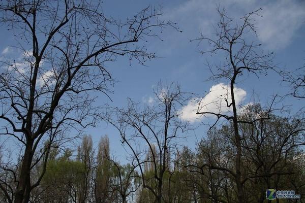 春天来了-动物世界Ⅱ-zol相册